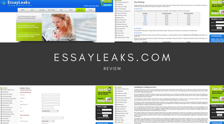 essayleaks.com review