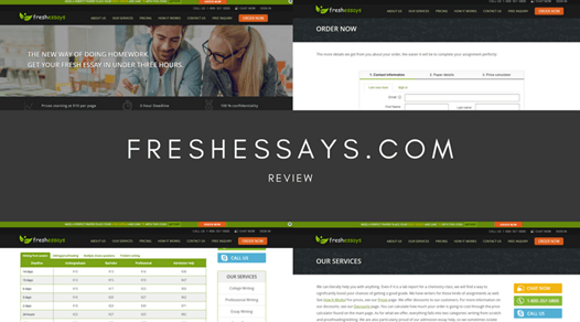 freshessays.com review