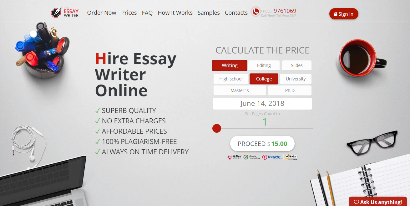 pro essay writer review