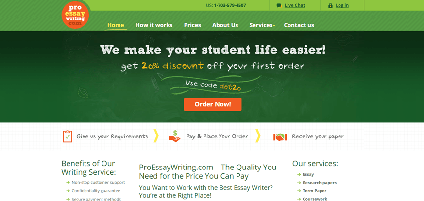 pro essay writing review
