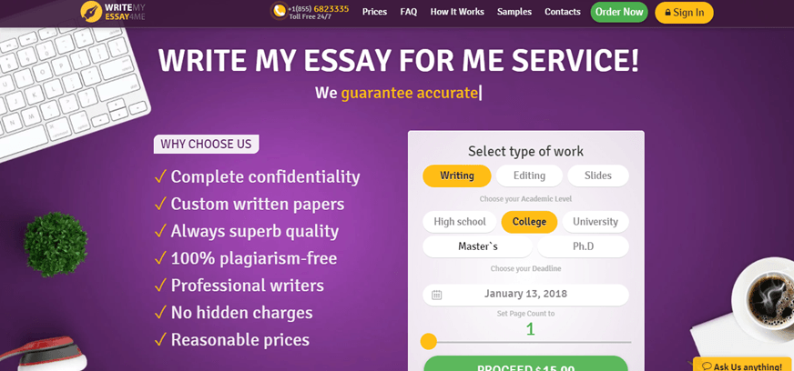 Review my essay