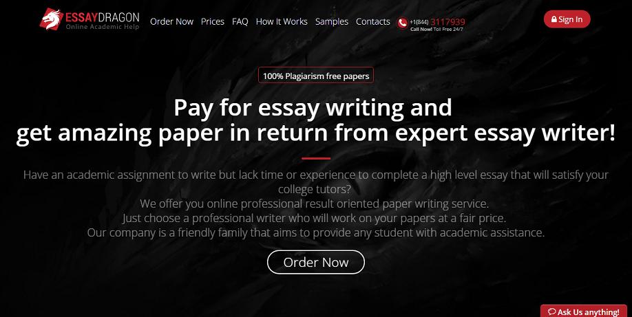 essay dragon review