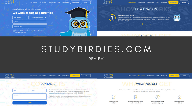 StudyBirdies.com review